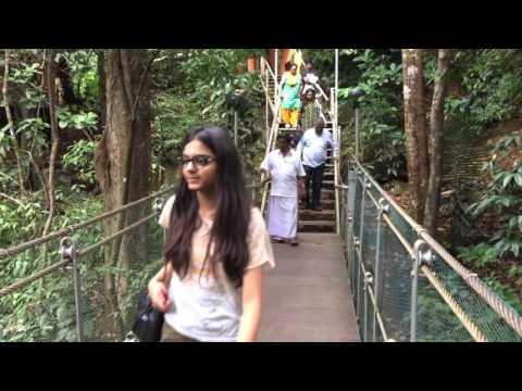 vythiri resorts wayanad kerala