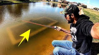 INCREDIBLE FISHING in CRAZY URBAN POND!!