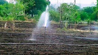 Sprinkler Irrigation System in Agriculture