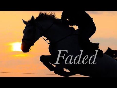 Faded || Equestrian Music Video ||