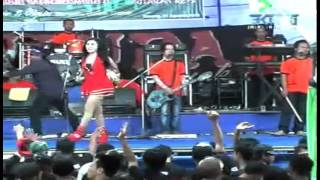 Video Dangdut Pantura | Oplosan - Norma Silvia download MP3, 3GP, MP4, WEBM, AVI, FLV November 2017