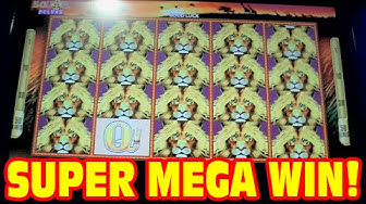 50 Lions DELUXE - SUPER MEGA BIG WIN - New Slot Machine 3 Bonus Showcase