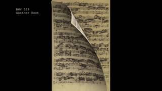 J. S. Bach, Sonate C, BWV 529 (Gunther Rost)