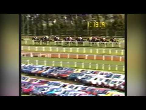 1988 Caulfield Cup Imposera