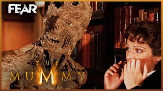 vuclip The Mummy Is Scared Of Cats | The Mummy (1999)