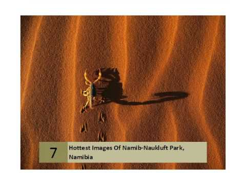 Hottest Images Of Namib Naukluft Park. Namibia