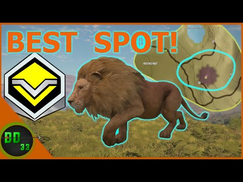 I Found an Incredible Spot for Diamond LIONS! Call Of The Wild
