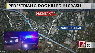 Man, dog die after being hit by car while crossing road in Raleigh, police say