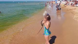 #АНАПА. Погода. 20.08.2018 ЗМЕЯ!!! Сильный ветер. Где Чистое море. ПЛЯЖ КАВКАЗ.