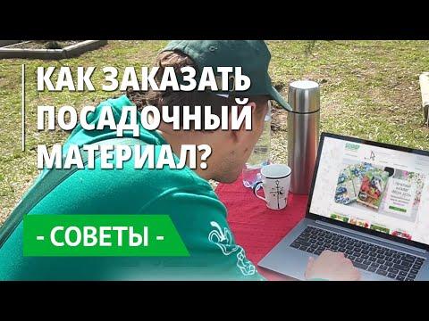 Как заказать посадочный материал: саженцы, семена и луковицы в интернет-магазине Беккер?