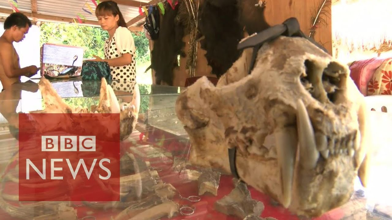 Undercover in myanmars sin city where anything goes bbc news undercover in myanmars sin city where anything goes bbc news youtube thecheapjerseys Images