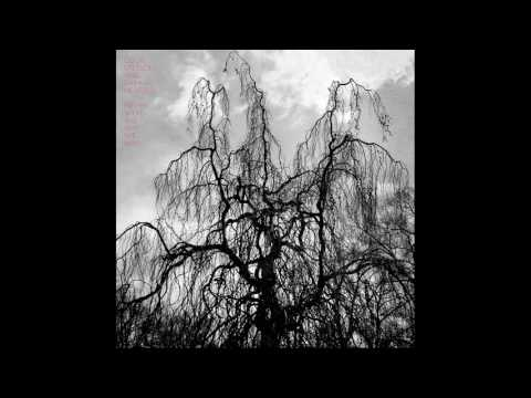 Colin Stetson & Sarah Neufeld - Never Were the Way She Was (full album)