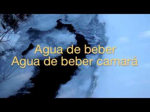 Sol Connection - Agua De Beber (Lyric Video)