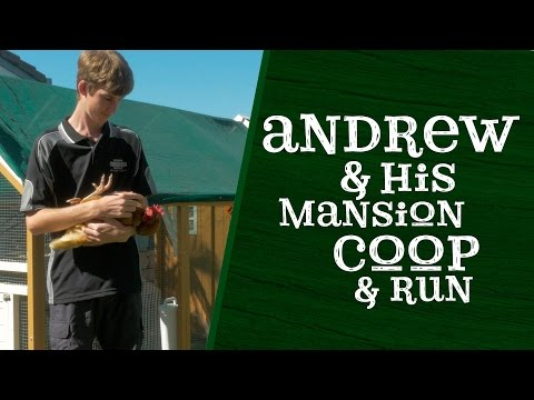 Andrew and his Mansion Chicken Coop and Run