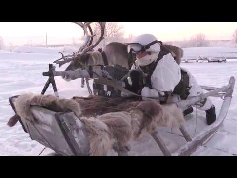 На Крайнем Севере разведчики СФ учатся использовать оленьи и собачьи упряжки