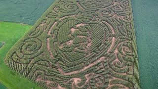 The Corn Maze 2018 - .thefarminharmony.com