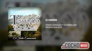 TEMOH GONZALES - LA CAMINERA (COCHO Music 2017)