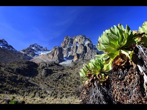Mount Kenya - Kenia 2015