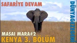 Kenya 3. Bölüm Masai Mara #2 Safariye Devam Afrika Dünya Gezegeni DG