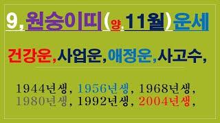 원숭이띠,11월운세,건강운,금전운,애정운,사고수, 010/4258/8864