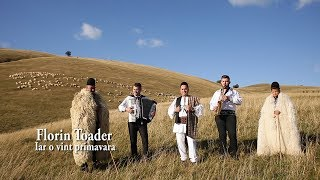 Florin Toader -  Iar o vint primavara || NOU !! thumbnail