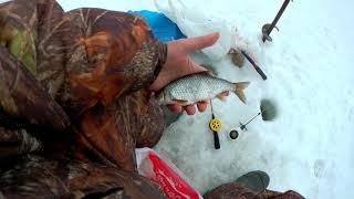 Зимняя рыбалка в Саратовской области 21 03 2021 г