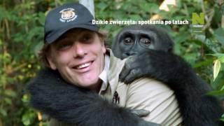Polsat Viasat Nature - Dzikie zwierzęta: spotkania po latach - promo