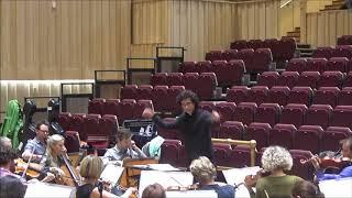 Dvorak, Symphony No 8 (excerpts)