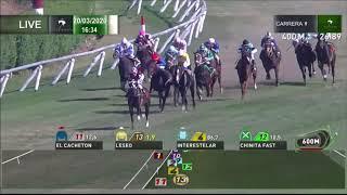 Vidéo de la course PMU PREMIO FOGATTA