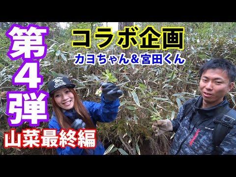 【神奈川・山梨県境】山菜狩り コラボ企画編