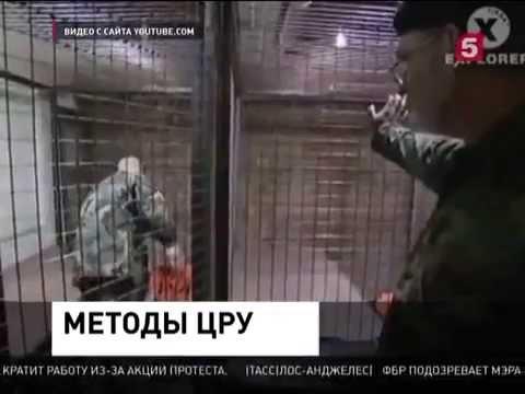 ЦРУ пытает людей в тюрьме  Новости