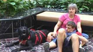 4 Paws For Ability - Autism Assistance Dogs W/tethering