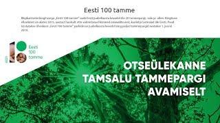 Eesti 100 Tamme - OTSEÜLEKANNE thumbnail