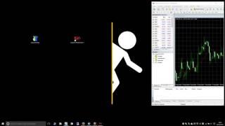 Trading-Software: Wie kann ich eine zweite MT4-Instanz installieren?