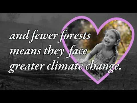 Forest Love letter to European President Barroso