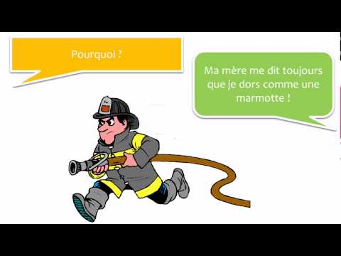 Französisch lernen mit Dialog # 15 dialogues