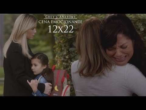 Callie Loses Custody of Sofia - Grey's Anatomy 12x22 HD Brazilian Pt-BR