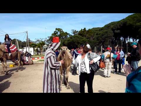 Tanger 2010 - at the mercy of merchants.MOV