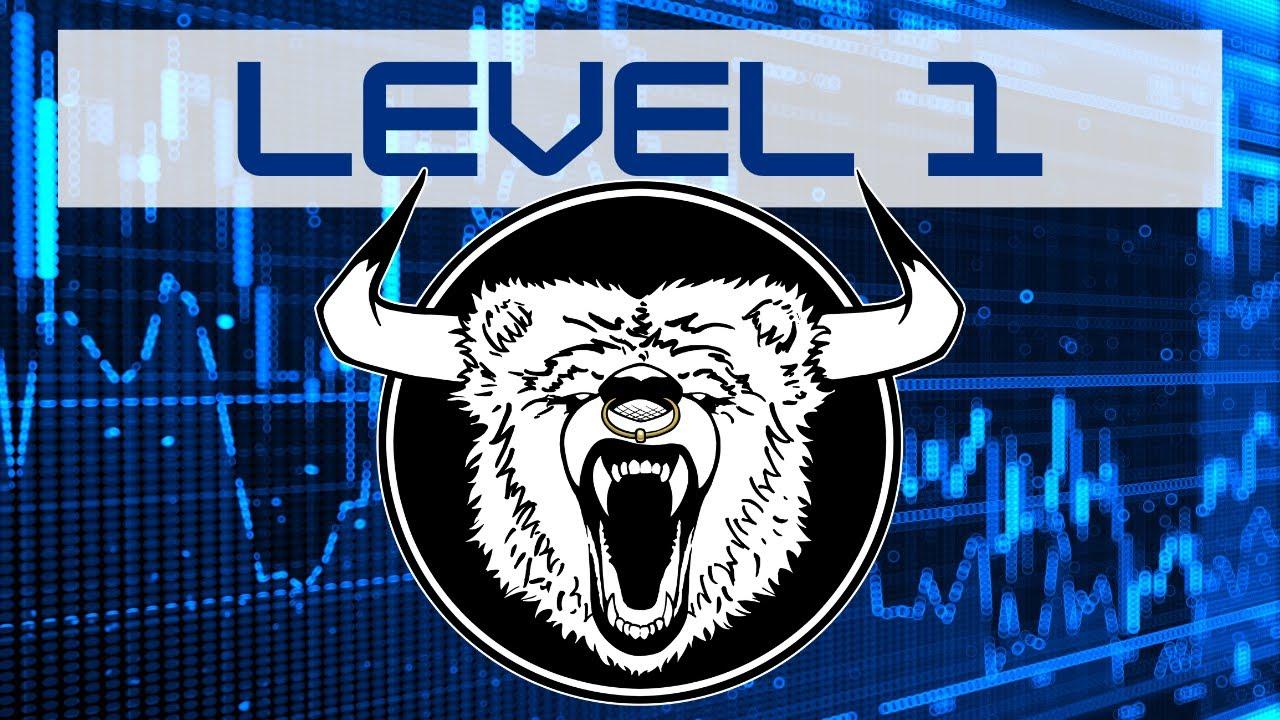 Level 2 Stock Quotes Level 1 Stock Quotes  Level 1 Vs Level 2 Market Data  Youtube