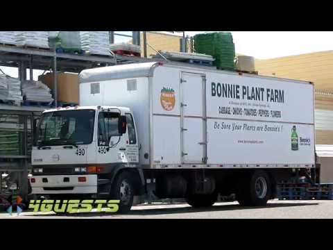 BONNIE PLANT FARM TRUCK ~ UNION SPRINGS ALABAMA