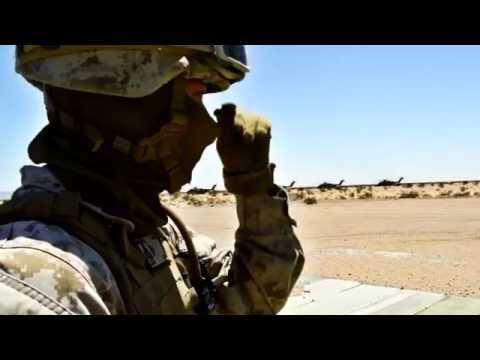 0481 |  Marine Landing Support Specialist