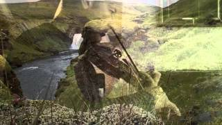 Death and the Sinner (Irish slow air)