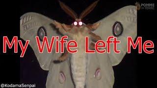 Moth Lamp Meme Compilation