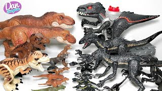 My Indoraptor  vs T-Rex Toys Collection - Jurassic World Fallen Kingdom Dinosaur Toys