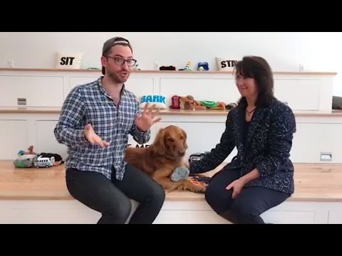 Taser The Search And Rescue Dog Visits BarkBox!