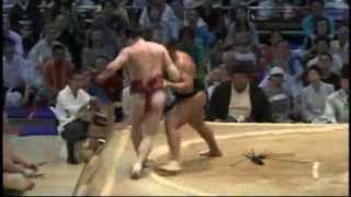 sumo oosunaarashi oniarashi.