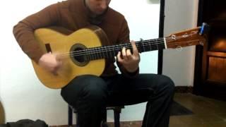 Paco Chorobo - Flamenca negra / Clavijero de Palo Planetary / Padouk