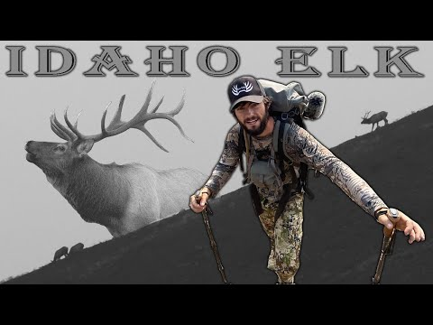 FIRST TIME Public Land Idaho Archery Elk Hunt – Our Experience