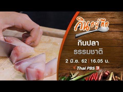 กินปลาธรรมชาติ - วันที่ 02 Jun 2019