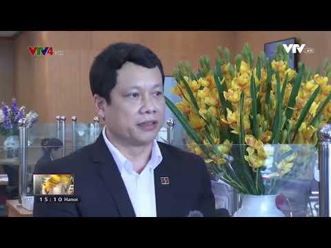 VTV News 15h - 02/02/2018